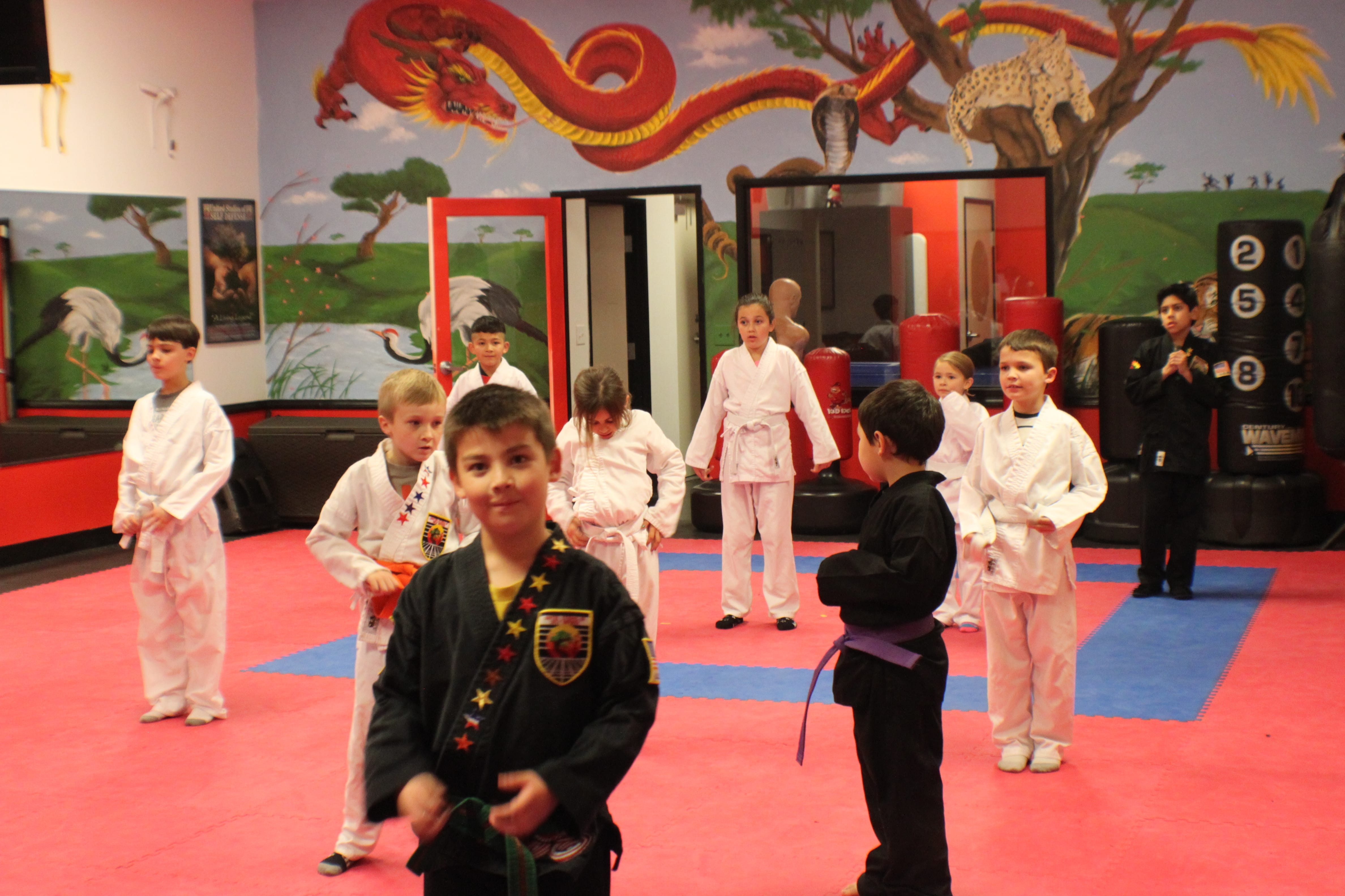 #martial arts #karate #kung fu